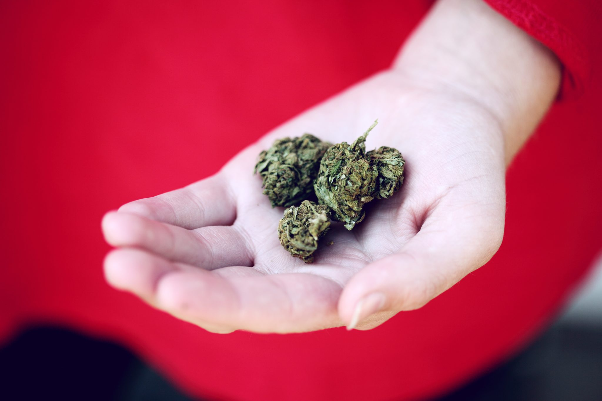 Want Weed Delivery? Here's The States To Legally Get It Now