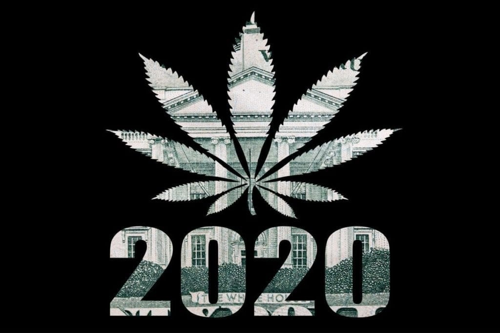 What Could The New Administration Mean For Cannabis?
