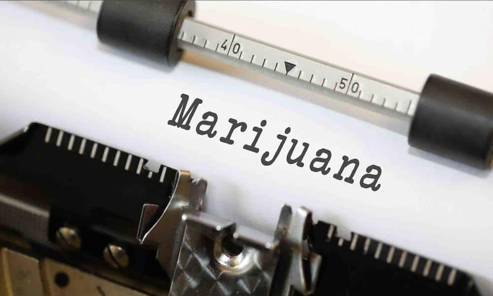 Best Workday Illinois Weed Strains