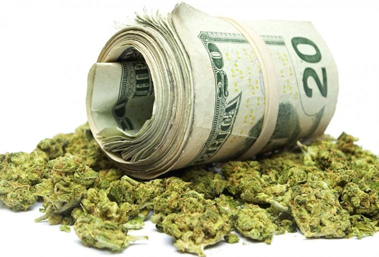 How much money you can make in weed